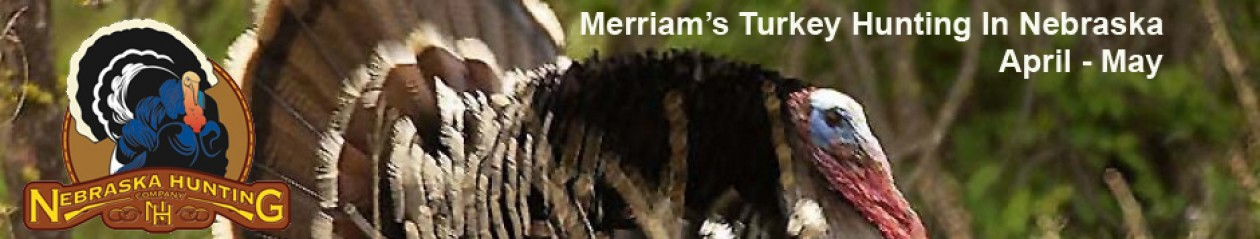 Nebraska Outfitters – Merriam's Turkey Hunts, Trophy Whitetail Deer, Waterfowl Hunts, Pheasant Hunts