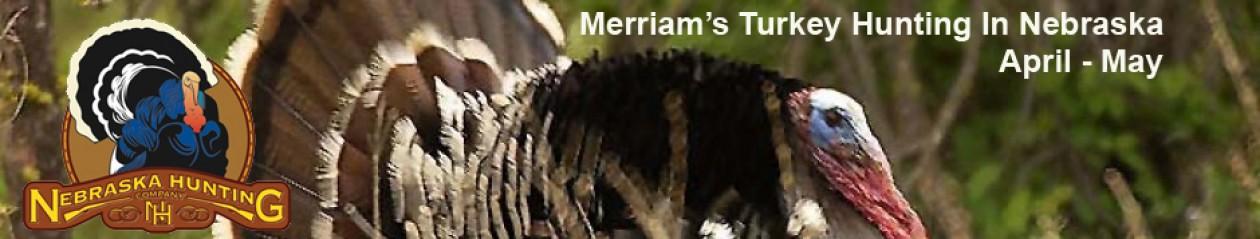 Nebraska Outfitters – Merriam's Turkey Hunts, Trophy Whitetail Deer
